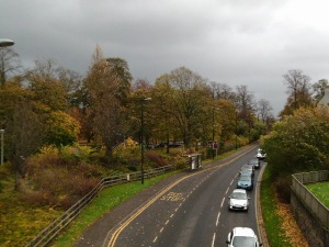 Autumn Colour Cooper Park 21.10.14 2