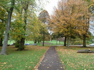 Autumn Colour Cooper Park 21.10.14 3